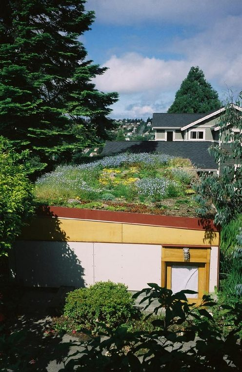 Green_Roof_Garage_View_from_Kitchen.jpg